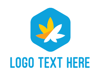 Medical Marijuana - Cannabis Hexagon logo design