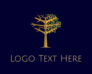 Winter - Winter & Spring logo design