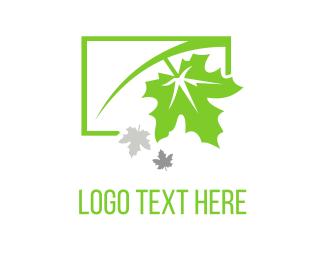 Season - Green Maple logo design