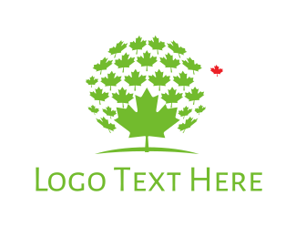 Maple - Maple Leaves logo design