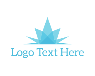 Explosion - Ice Flower logo design