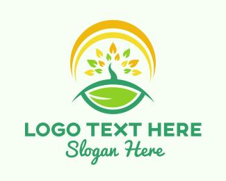 Tea - Sun & Tree logo design