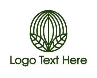 Caffeine - Green Coffee Bean Leaf  logo design
