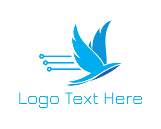 Venture Capital - Tech Bird logo design