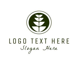 Wheat - Wheat Plant logo design