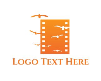 Filmstrip - Bird Film logo design