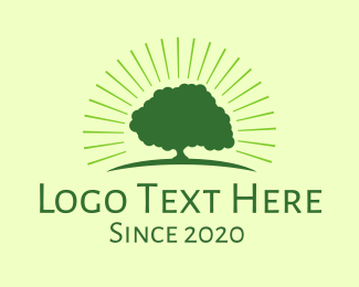 Bright - Bright Tree logo design