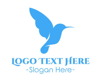 Colibri - Little Blue Hummingbird logo design
