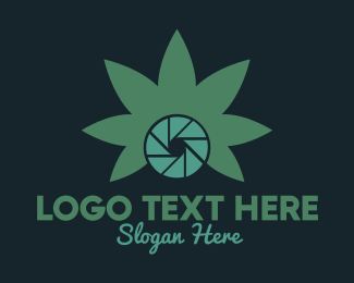 Aperture - Photo Cannabis logo design
