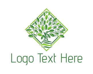 """Leafy Green Tree"" by MRM1"