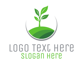 Stem - Plant Circle logo design