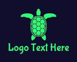 """""""Green Sea Turtle"""" by neostudio"""
