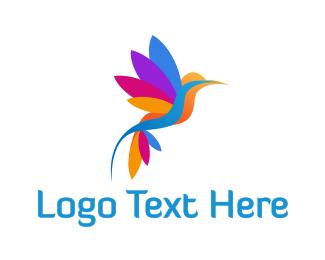 Robin - Colorful Hummingbird logo design