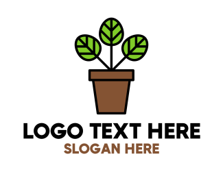 Palm Pot Logo Maker