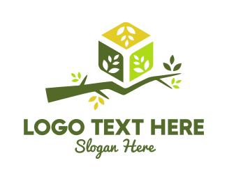 Spring - Branch Box logo design