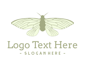 Visual - Green Cicada logo design