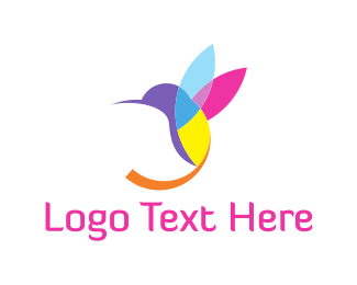 Colorful Hummingbird Logo