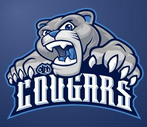 Blue Logo Design by Madeli