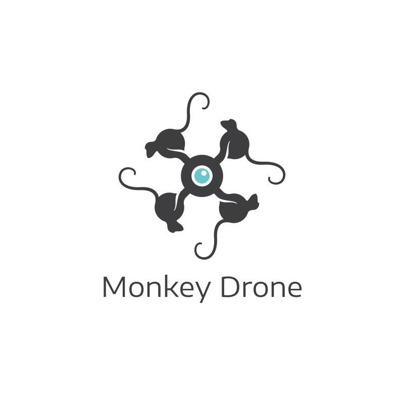 Monkey Drone logo design