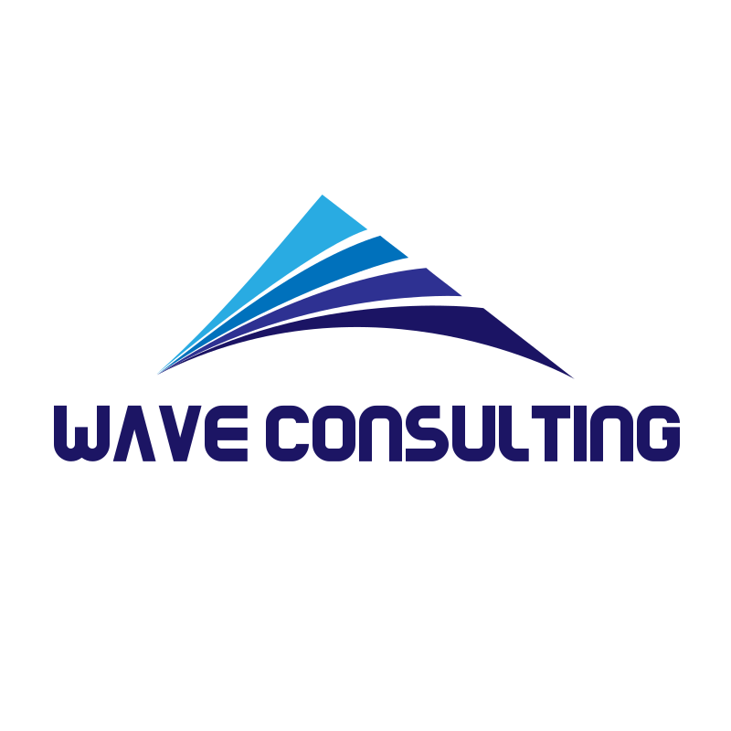 Triangle Wave Consulting Logo Design