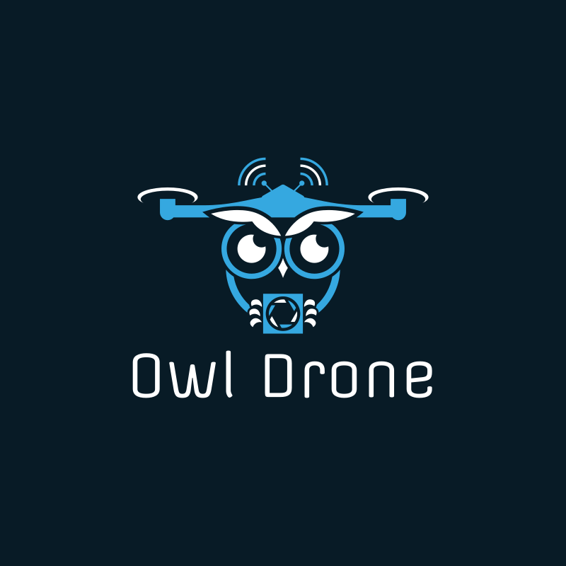 Owl Drone Photography Logo Design