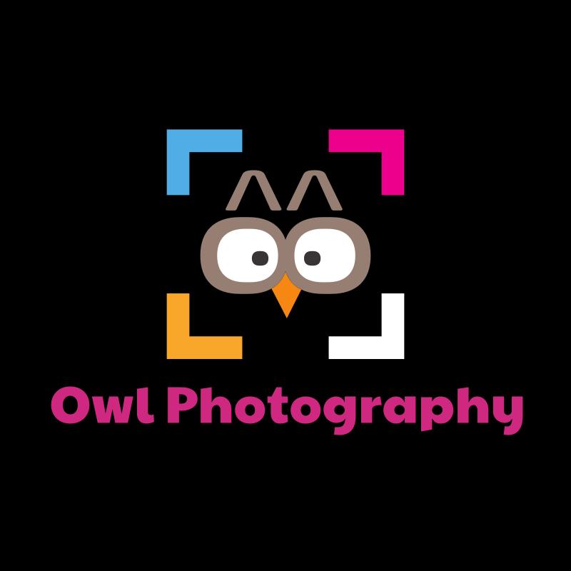 Owl Photography Logo Design