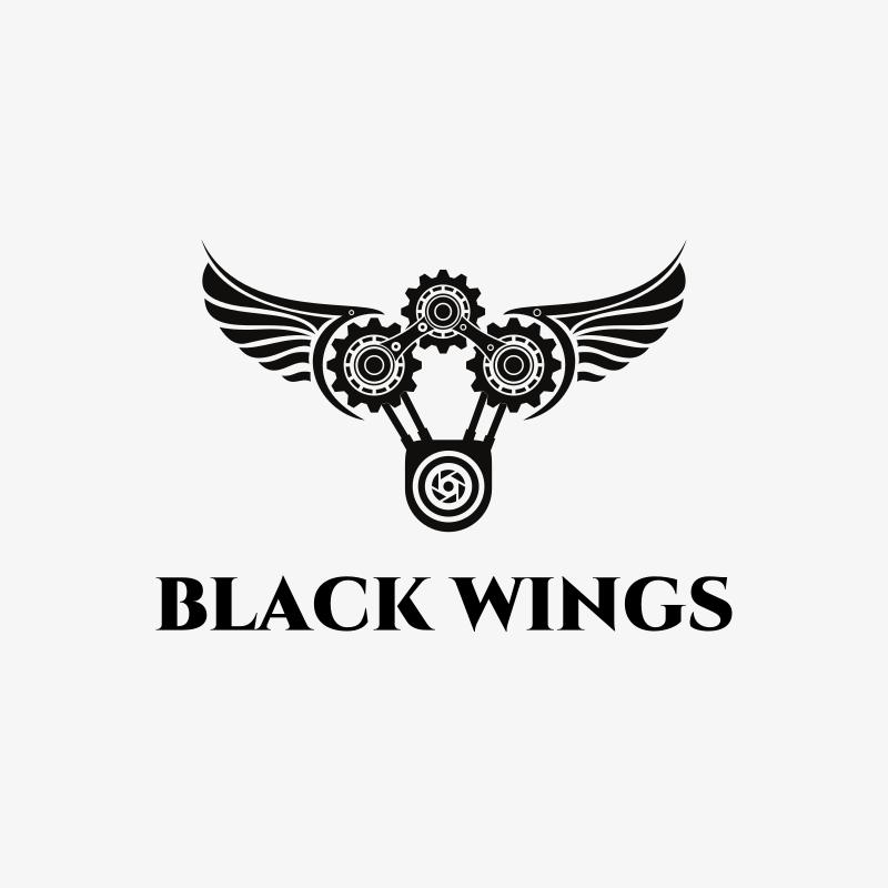 Black Wings Photography Logo Design