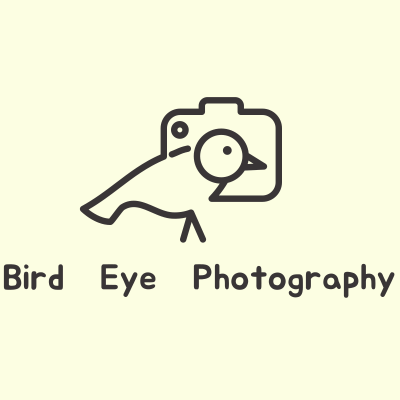 Bird Eye Photography Logo Design