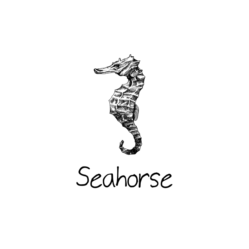 Seahorse Logo Design