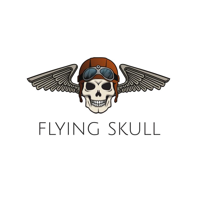 YouTube Flying Skull Logo Design