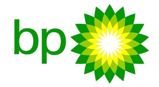 BP (Bloom Flower) Green & Yellow Sunflower Logo Design