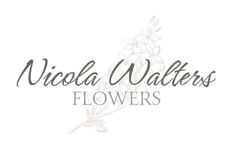 Nicola Walters Logo Design by Bisuality