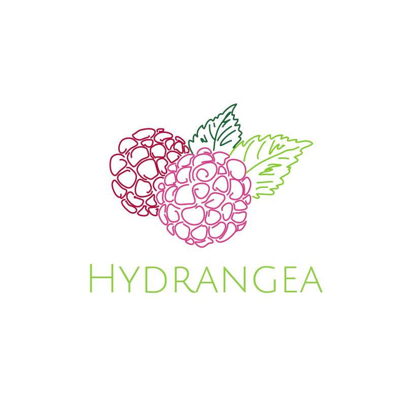 Hydrangea Logo Design