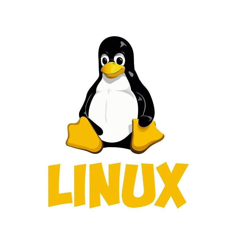 Linux Logo Design
