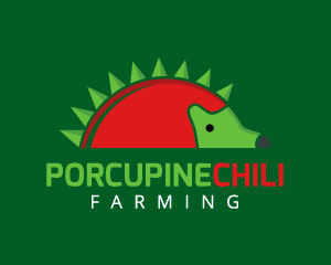 Porcupine Logo Design by Inovalius