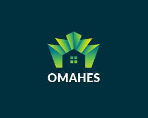 Home Logo Design  by Ions