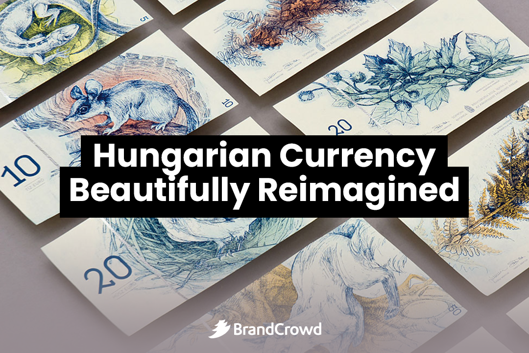 the-header-portrays-the-reimagined-forint-bills-with-a-typography-of-the-blog-title-encased-in-a-black-rectangular-frame