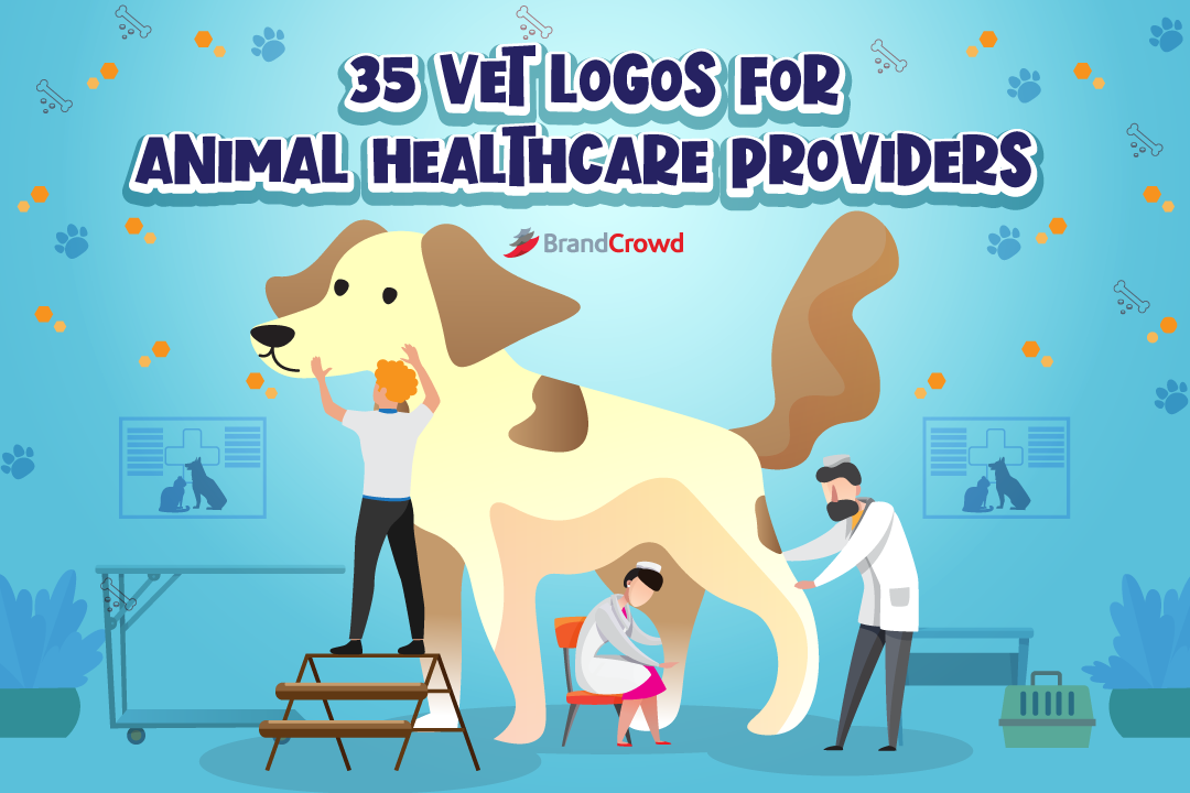 the-header-features-an-illsutration-of-animal-healthcare-professionals-attending-to-a-dog-with-the-blog-title-on-the-upper-region