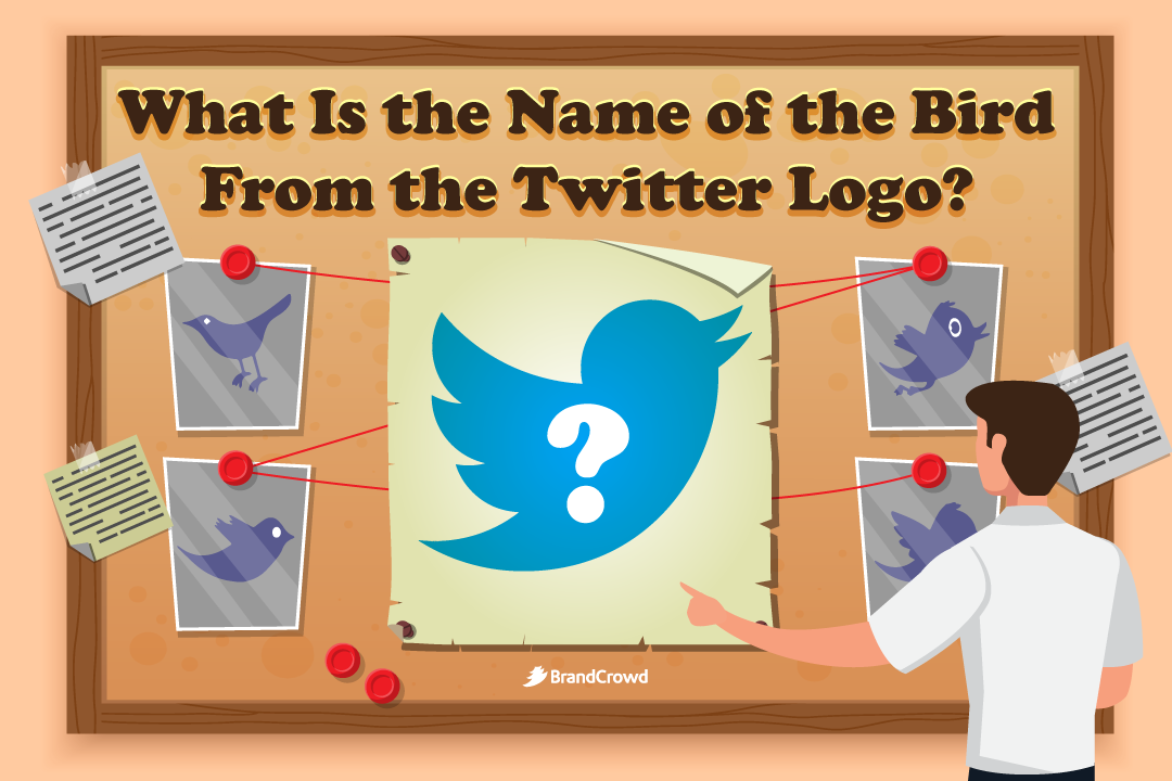 the-header-features-a-corkboard-with-information-about-the-twitter-logo-while-the-blog-title-typography-is-above